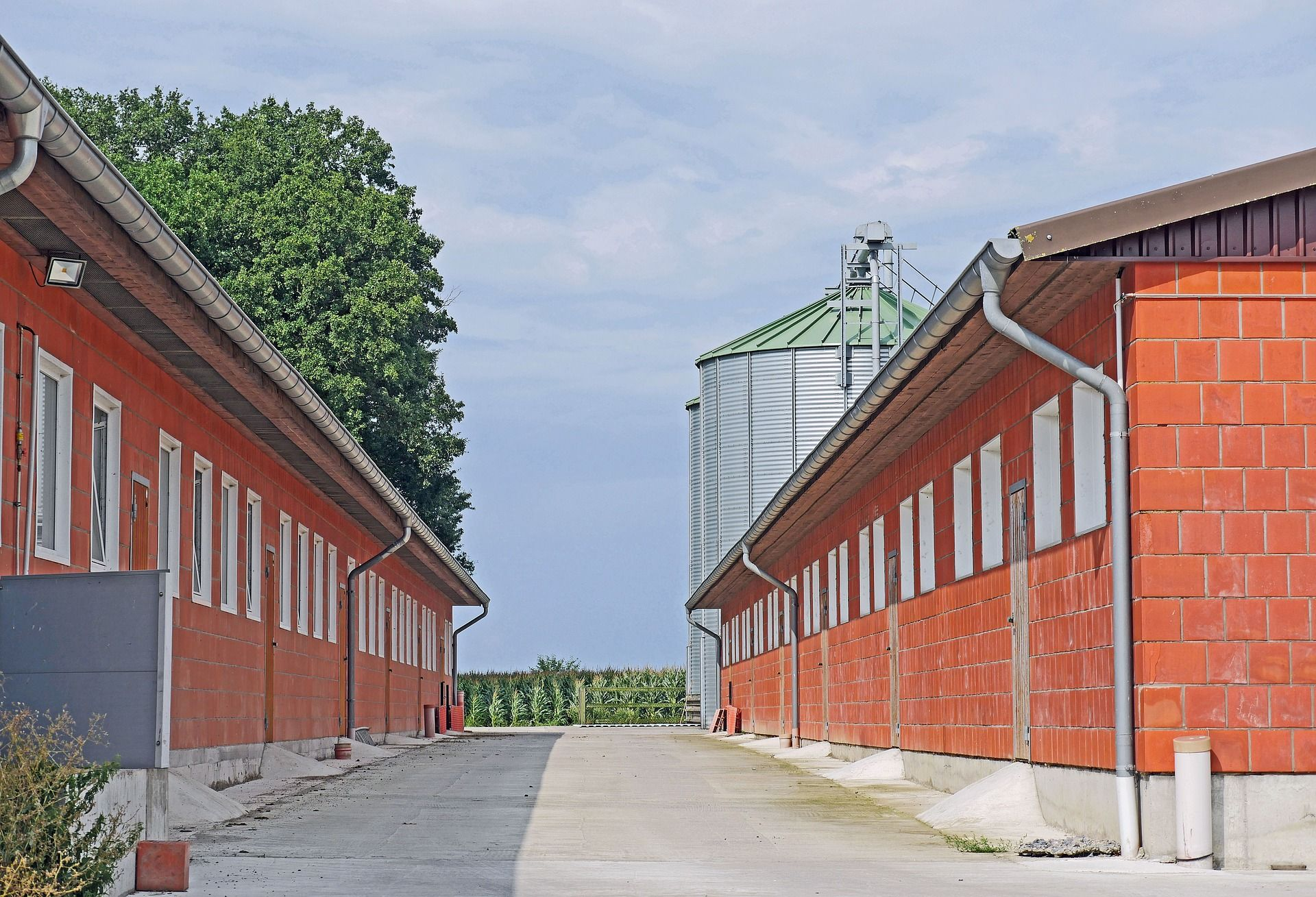 Outside of 2 large intensive hen houses